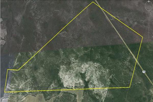 Foto de terreno habitacional en venta en  , santa fe, rioverde, san luis potosí, 7953491 No. 07