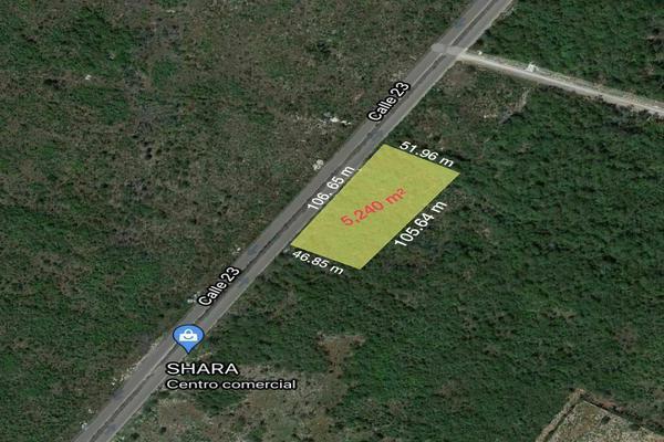 Foto de terreno habitacional en venta en  , santa gertrudis copo, mérida, yucatán, 20482966 No. 02