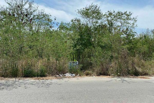 Foto de terreno habitacional en venta en  , santa gertrudis copo, mérida, yucatán, 20482966 No. 04