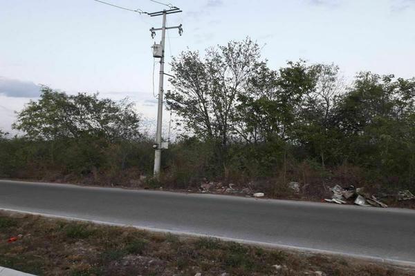 Foto de terreno habitacional en venta en  , santa gertrudis copo, mérida, yucatán, 20482966 No. 05