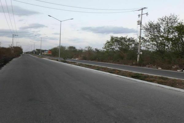 Foto de terreno habitacional en venta en  , santa gertrudis copo, mérida, yucatán, 20482966 No. 06
