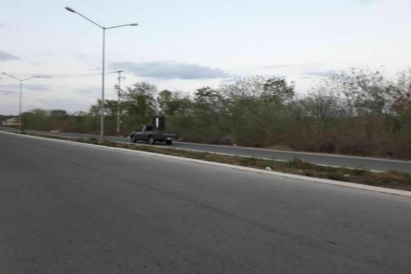 Foto de terreno habitacional en venta en  , santa gertrudis copo, mérida, yucatán, 20482966 No. 08
