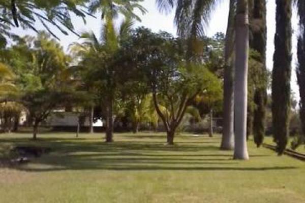 Foto de terreno habitacional en renta en santa ines 0, oacalco, yautepec, morelos, 2651272 No. 05