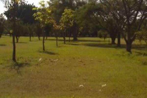 Foto de terreno habitacional en renta en santa ines 0, oacalco, yautepec, morelos, 2651272 No. 06