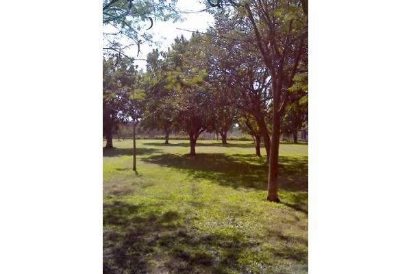 Foto de terreno habitacional en renta en santa ines 0, oacalco, yautepec, morelos, 2651278 No. 09