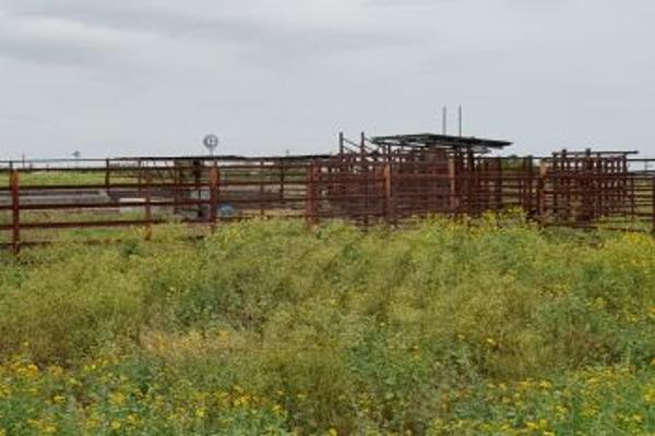Foto de rancho en venta en  , santa isabel y dolores, cadereyta jiménez, nuevo león, 5377264 No. 08