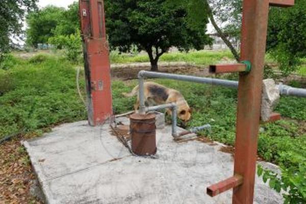 Foto de rancho en venta en  , santa isabel y dolores, cadereyta jiménez, nuevo león, 5377264 No. 16
