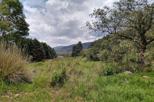 Foto de terreno habitacional en venta en  , santa maría atarasquillo, lerma, méxico, 8139281 No. 01