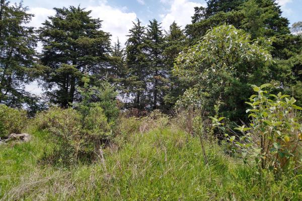 Foto de terreno habitacional en venta en  , santa maría atarasquillo, lerma, méxico, 8139281 No. 02