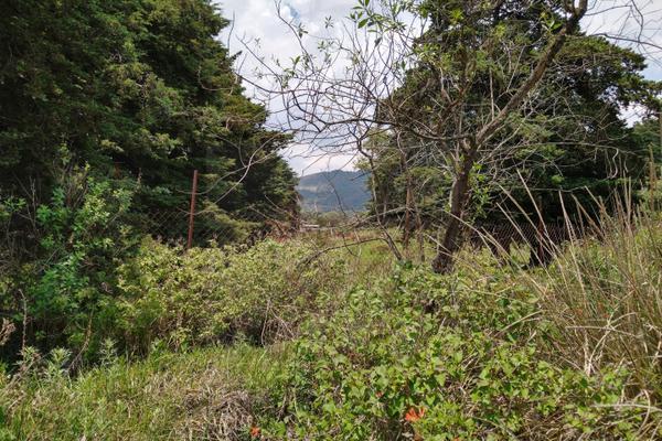 Foto de terreno habitacional en venta en  , santa maría atarasquillo, lerma, méxico, 8139281 No. 04
