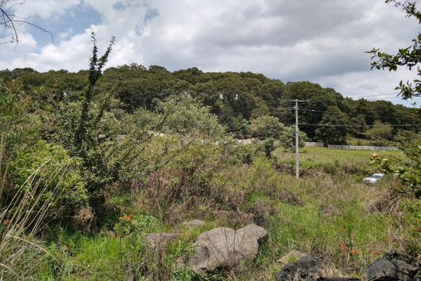 Foto de terreno habitacional en venta en  , santa maría atarasquillo, lerma, méxico, 8139281 No. 05