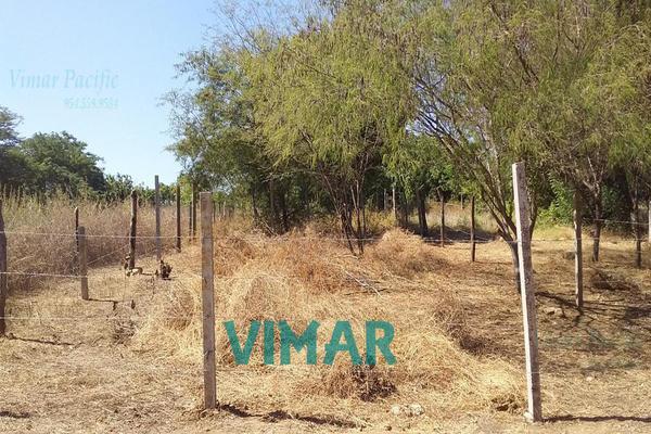 Foto de terreno habitacional en venta en  , santa maria colotepec, santa maría colotepec, oaxaca, 20239646 No. 04