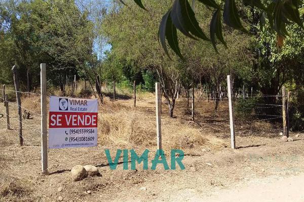 Foto de terreno habitacional en venta en  , santa maria colotepec, santa maría colotepec, oaxaca, 20239646 No. 05