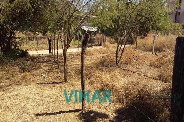 Foto de terreno habitacional en venta en  , santa maria colotepec, santa maría colotepec, oaxaca, 20239646 No. 06
