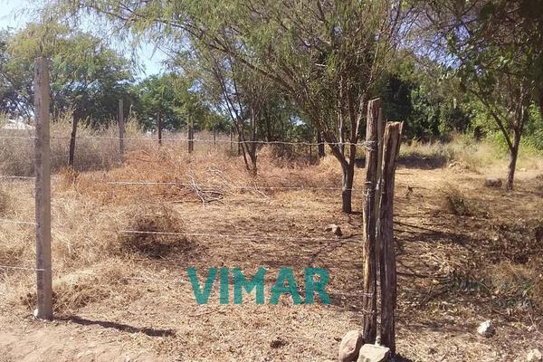 Foto de terreno habitacional en venta en  , santa maria colotepec, santa maría colotepec, oaxaca, 20239646 No. 07