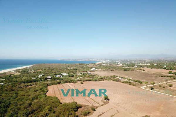 Foto de terreno habitacional en venta en  , santa maria colotepec, santa maría colotepec, oaxaca, 20239646 No. 12