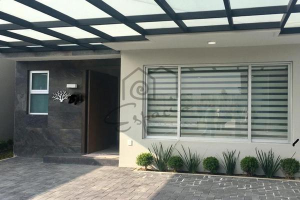 Foto de casa en venta en  , santa maría, san mateo atenco, méxico, 8827422 No. 03