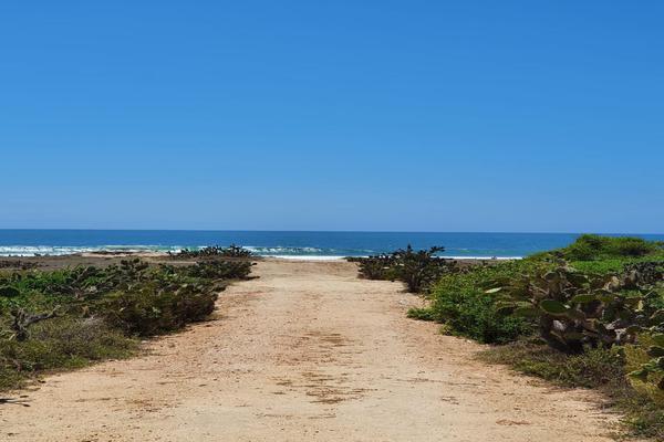Foto de terreno habitacional en venta en  , santa maria, santa maría colotepec, oaxaca, 19702153 No. 05