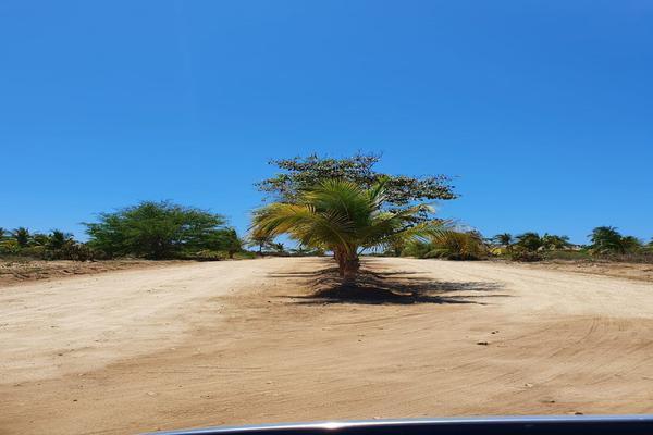 Foto de terreno habitacional en venta en  , santa maria, santa maría colotepec, oaxaca, 19702153 No. 08