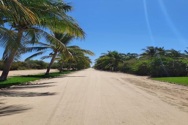 Foto de terreno habitacional en venta en  , santa maria, santa maría colotepec, oaxaca, 19702153 No. 09