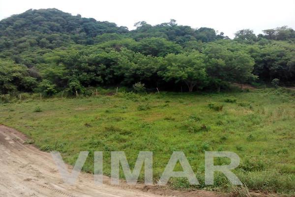 Foto de terreno habitacional en venta en  , santa maria, santa maría colotepec, oaxaca, 19734944 No. 08
