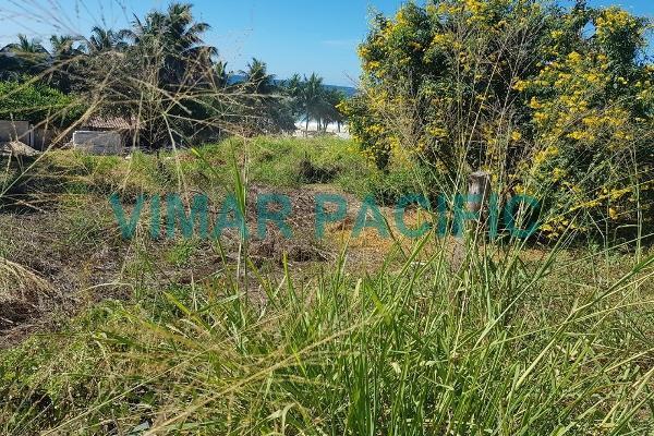 Foto de terreno habitacional en venta en  , santa maría tonameca, santa maría tonameca, oaxaca, 4668101 No. 02