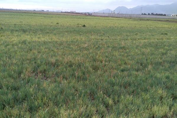 Foto de terreno habitacional en venta en  , santa maría tonanitla, tonanitla, méxico, 5871465 No. 02