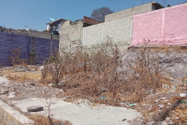 Foto de terreno habitacional en venta en  , santa maría tulpetlac, ecatepec de morelos, méxico, 0 No. 03
