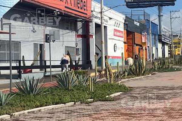 Foto de bodega en venta en  , santa rosa de jauregui, querétaro, querétaro, 7292902 No. 08