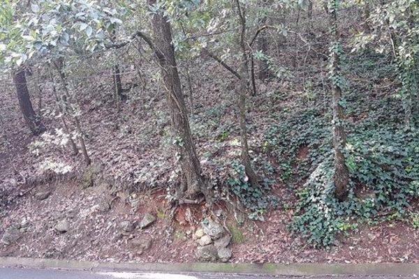 Foto de terreno habitacional en venta en santander , bosques de san ángel sector palmillas, san pedro garza garcía, nuevo león, 11407491 No. 02