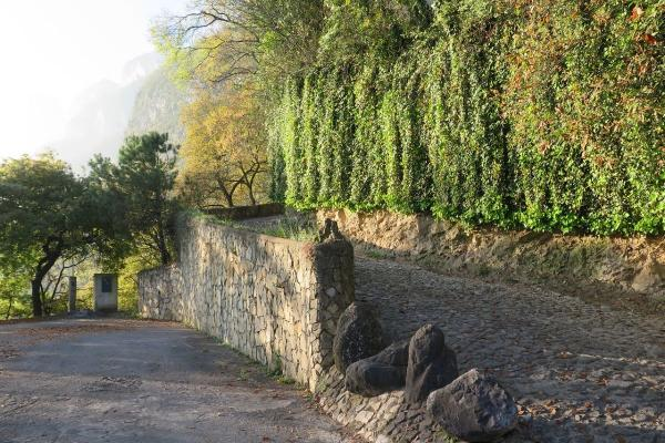 Foto de casa en venta en santander , bosques de san ángel sector palmillas, san pedro garza garcía, nuevo león, 11907787 No. 04