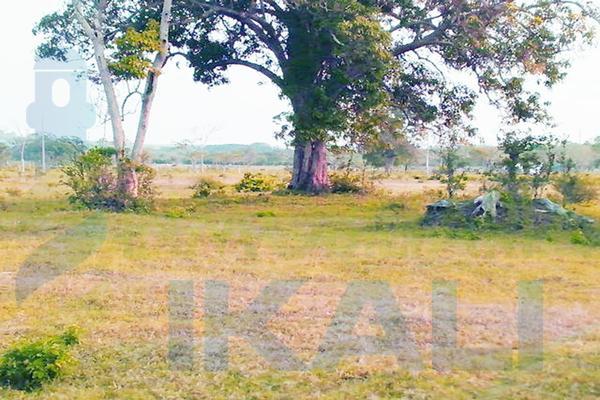 Foto de terreno habitacional en venta en  , santiago de la peña, tuxpan, veracruz de ignacio de la llave, 5857801 No. 11
