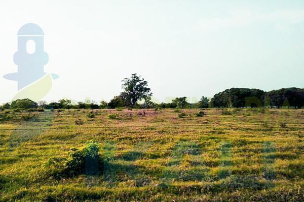 Foto de terreno habitacional en venta en  , santiago de la peña, tuxpan, veracruz de ignacio de la llave, 5857801 No. 14