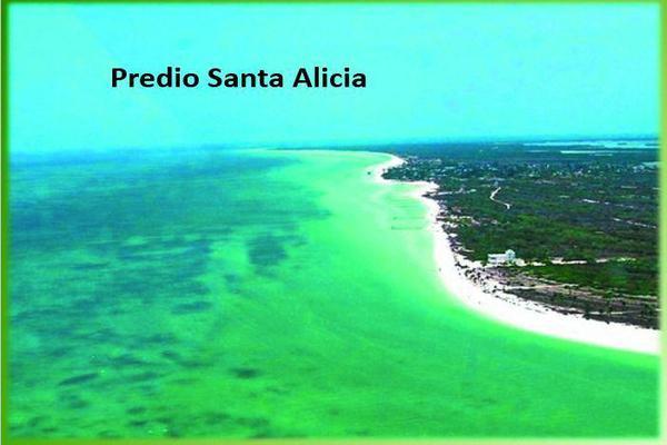 Foto de terreno habitacional en venta en  , santiago juxtlahuaca centro, santiago juxtlahuaca, oaxaca, 7990177 No. 06