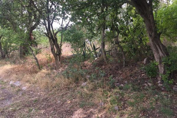 Foto de terreno habitacional en venta en  , santiago tlapanaloya, tepeji del río de ocampo, hidalgo, 5337603 No. 03