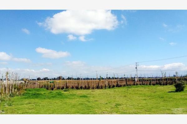 Foto de terreno industrial en venta en  , santiaguito cuaxustenco, tenango del valle, méxico, 3213530 No. 04
