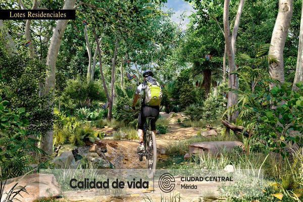 Foto de rancho en venta en sayil , merida centro, mérida, yucatán, 0 No. 06