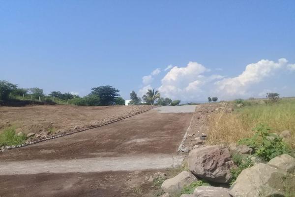 Foto de terreno habitacional en venta en s/c , chivato, villa de álvarez, colima, 0 No. 10