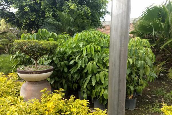 Foto de terreno comercial en venta en sc , emiliano zapata, cuautla, morelos, 7302926 No. 03
