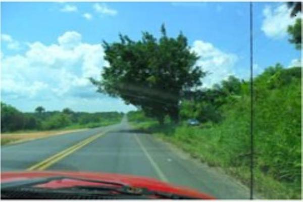 Foto de rancho en venta en s/c , encinal de ojapa, texistepec, veracruz de ignacio de la llave, 10098383 No. 01
