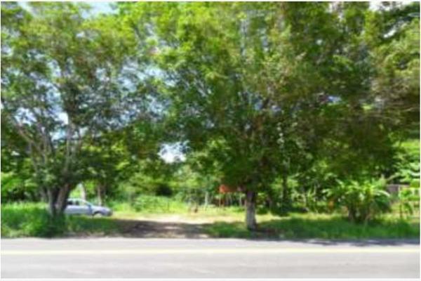 Foto de rancho en venta en s/c , encinal de ojapa, texistepec, veracruz de ignacio de la llave, 10098383 No. 03