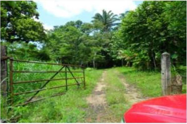 Foto de rancho en venta en s/c , encinal de ojapa, texistepec, veracruz de ignacio de la llave, 10098383 No. 04