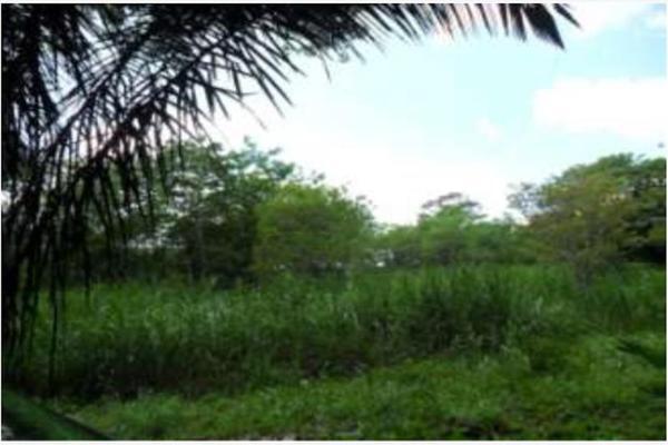 Foto de rancho en venta en s/c , encinal de ojapa, texistepec, veracruz de ignacio de la llave, 10098383 No. 06