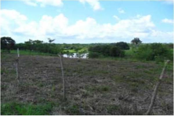 Foto de rancho en venta en s/c , encinal de ojapa, texistepec, veracruz de ignacio de la llave, 10098383 No. 08