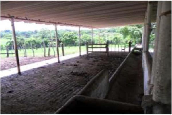 Foto de rancho en venta en s/c , encinal de ojapa, texistepec, veracruz de ignacio de la llave, 10098383 No. 16
