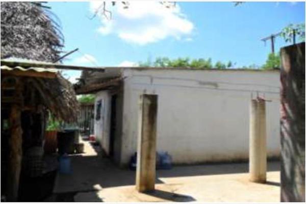 Foto de rancho en venta en s/c , encinal de ojapa, texistepec, veracruz de ignacio de la llave, 10098383 No. 19