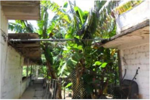 Foto de rancho en venta en s/c , encinal de ojapa, texistepec, veracruz de ignacio de la llave, 10098383 No. 20