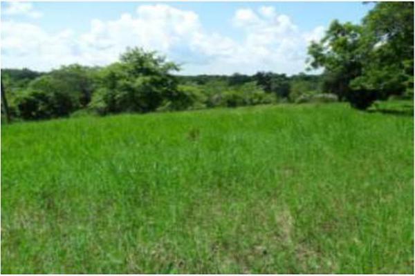 Foto de rancho en venta en s/c , encinal de ojapa, texistepec, veracruz de ignacio de la llave, 10098383 No. 25