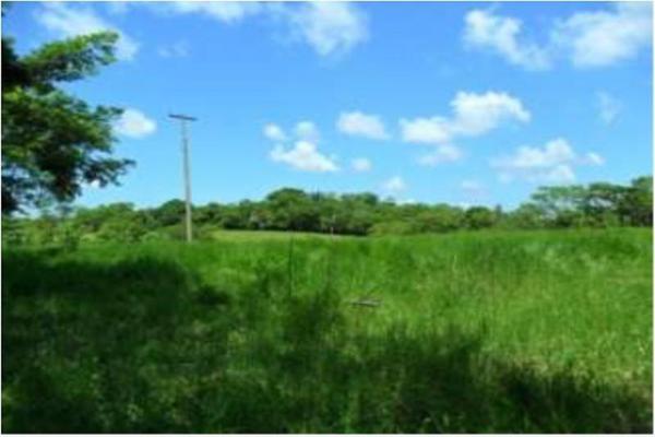 Foto de rancho en venta en s/c , encinal de ojapa, texistepec, veracruz de ignacio de la llave, 10098383 No. 28