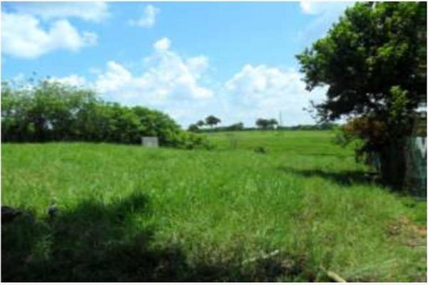 Foto de rancho en venta en s/c , encinal de ojapa, texistepec, veracruz de ignacio de la llave, 10098383 No. 29